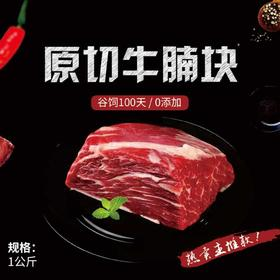 进口原切牛腩块品质牛肉安全健康0添加谷物饲养