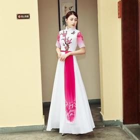 YSbFS新款民族风优雅气质绣花长款短袖连衣裙TZF