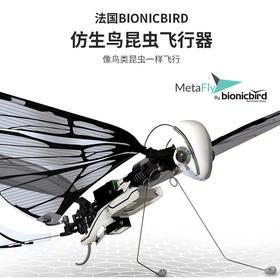 法国BionicBird MetaFly仿生昆虫遥控飞行器