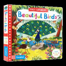 小小探索家系列 美丽的鸟儿英文原版绘本 First Explorers Beautiful Birds busy系列 幼儿探索启蒙英语纸板书 脑力益智开发游戏书
