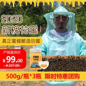 【2020年新蜜】天然纯正天兴洋槐蜜正宗槐花蜜500g/瓶*3瓶