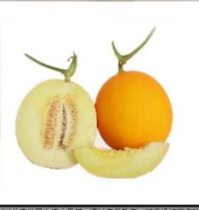 久红瑞香瓜1.5kg±100g