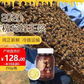 天然纯正新鲜天兴槐花蜂王浆250g/瓶野生无添加