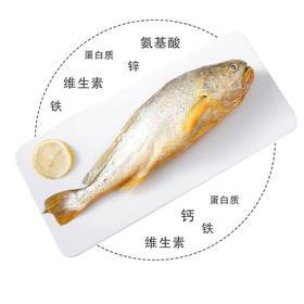 缅甸野生黄花鱼 (两条装)600g