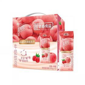 【买一件送一件】蒙牛真果粒白桃味240g*10
