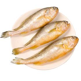 小黄鱼  6条装 1kg/袋