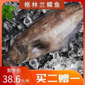 格林兰鲽鱼 600g-700g/条