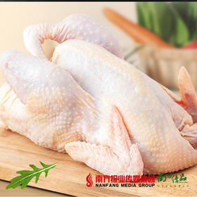 【珠三角包邮】开平老母鸡 2.5-2.8斤/ 只 (次日到货)