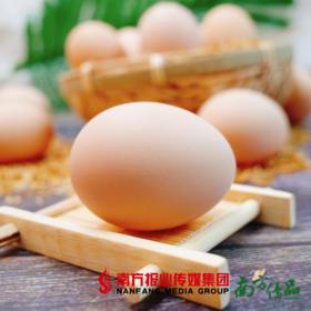 【全国包邮】农家自产土鸡蛋  30枚/份