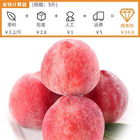 山东水蜜桃5斤|清新香甜 皮薄肉脆 果实饱满【应季蔬果】