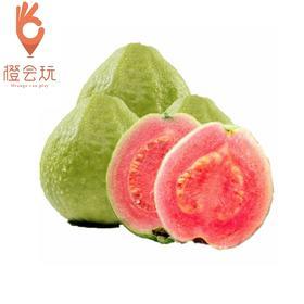 【甘草水果】红心芭乐 250g