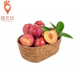 【整果】仙居特产 樱桃李子