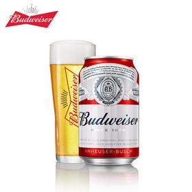 百威啤酒330ml
