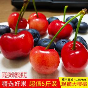 限时特惠|樱山红大樱桃新鲜时令水果现摘产地直供顺丰直发(江浙沪包邮)
