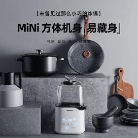 大宇(DAEWOO)空气炸锅 家用无油空气炸杯 薯条机炸鸡翅煎炸锅