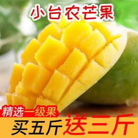 【战疫助农 买5斤送3斤】 小台农芒果 核小甜蜜 多汁嫩滑  现摘现发