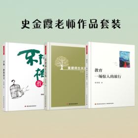 史金霞老师作品套装3册