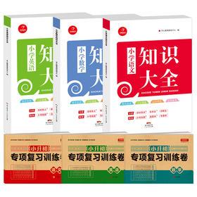 【开心图书】知识大全+小升初专项复习训练卷共6册