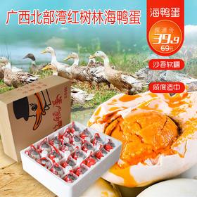 广西北部湾红树林海鸭蛋 60g/枚 双角兽海鸭蛋