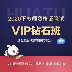 【中学-综合素质+教育知识与能力】2020下教师资格证笔试VIP钻石班