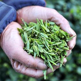 回味至德 绿茶简易礼盒
