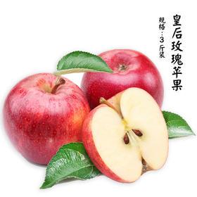 [新西兰皇后玫瑰苹果]香甜脆嫩 多汁爽口 3斤9颗装