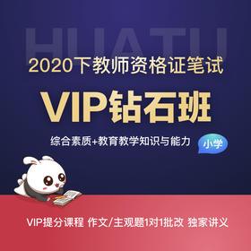 【小学-综合素质+教育教学知识与能力】2020下教师资格证笔试VIP钻石班