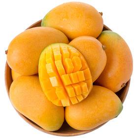 【小台农芒果】3斤/5斤 单果60g+(果派)