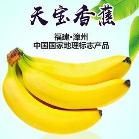 【农道好物精选】天宝香蕉 农家青香蕉现砍现发 5斤 到货自行催熟 告别工业催熟