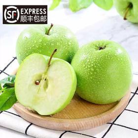 【精选水果】深山青苹果 原生态不打蜡 脆酸甜多汁 产地直供 现摘现发