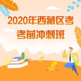 2020西藏考前冲刺班
