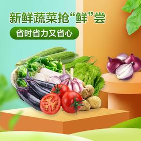 时令蔬菜合集(每日早上新鲜到货)
