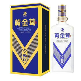 黄金茸酒V9系列480ml