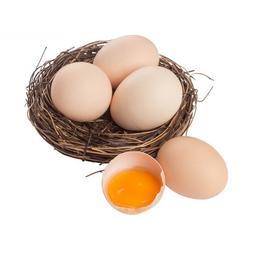 农家扶贫土鸡蛋60枚装