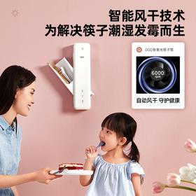 DGQ筷子筒篓置物架沥水壁墙挂式筷子笼家用消毒筷筒厨房收纳盒紫光