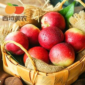 陕西黄肉油桃5斤(西域美农)