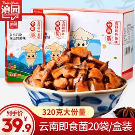 云南特产滇园鸡枞味云南菌320克盒装20袋 即食鸡纵菌菌子香菇菌