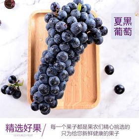 精品夏黑葡萄礼盒8斤装香甜无籽低糖顺丰直达