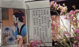 词话笺谱/纪念邮册 《知否》(册)