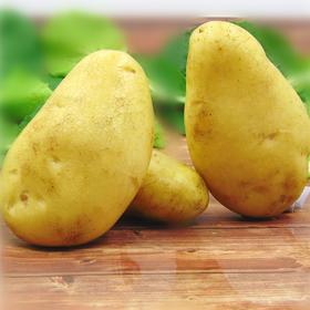 土豆农家自种新鲜蔬菜马铃薯洋芋香糯绵密细腻饱满9斤