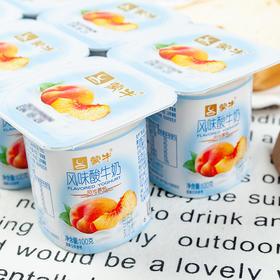 蒙牛风味酸牛奶普通黄桃果粒圆周杯100g*8杯