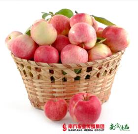 【珠三角包邮】南非樱桃小苹果 90-100g/个  16个/份 (次日到货)