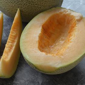 [西洲蜜 下单后5天内发货]果肉厚质 甘甜爽脆 2个装(8-9斤)