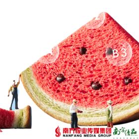 【珠三角包邮】A1西瓜味吐司 480g/10包/ 箱 (次日到货)