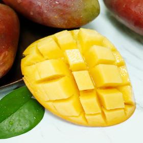 【助农抗疫 我们在行动】贵妃芒果 软嫩细腻 肉厚汁多 香甜可口 产地现摘新鲜直达可食率99.9% 当季芒果