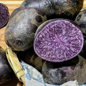 【李子柒视频推荐】云南特产乌洋芋 紫土豆 农家自种 现挖现发 新鲜天然 淀粉含量高 全是花青素的黑金刚土豆