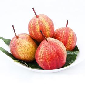 【陕西】新鲜采摘彩虹梨 果大核小 口感细腻 果肉白嫩清甜