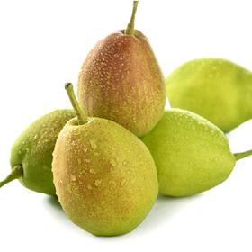 新疆库尔勒香梨 4斤/8斤(果派)