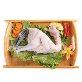苏北散养小公鸡净重1.5斤以上*1只装/2只装(匠至心)