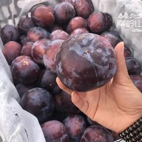 秦岭山下 黑布林 李子新鲜当季水果5斤装